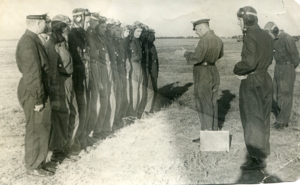 Лётная подготовка курсанта-лётчика ВМОЛАУ им. Сталина